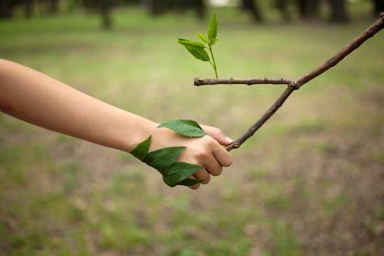 Idéologie et écologie